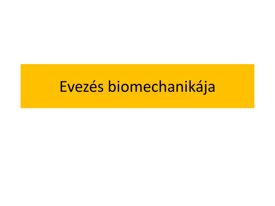 Evezés biomechanikája