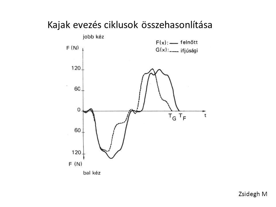 Kajak evezés ciklusok összehasonlítása