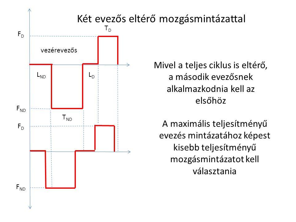 Két evezős eltérő mozgásmintázattal