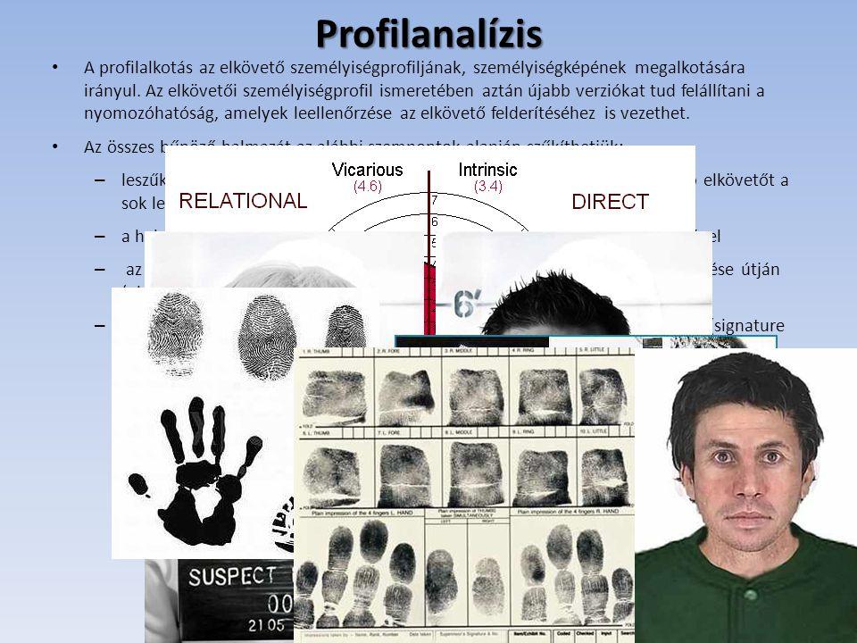 Profilanalízis