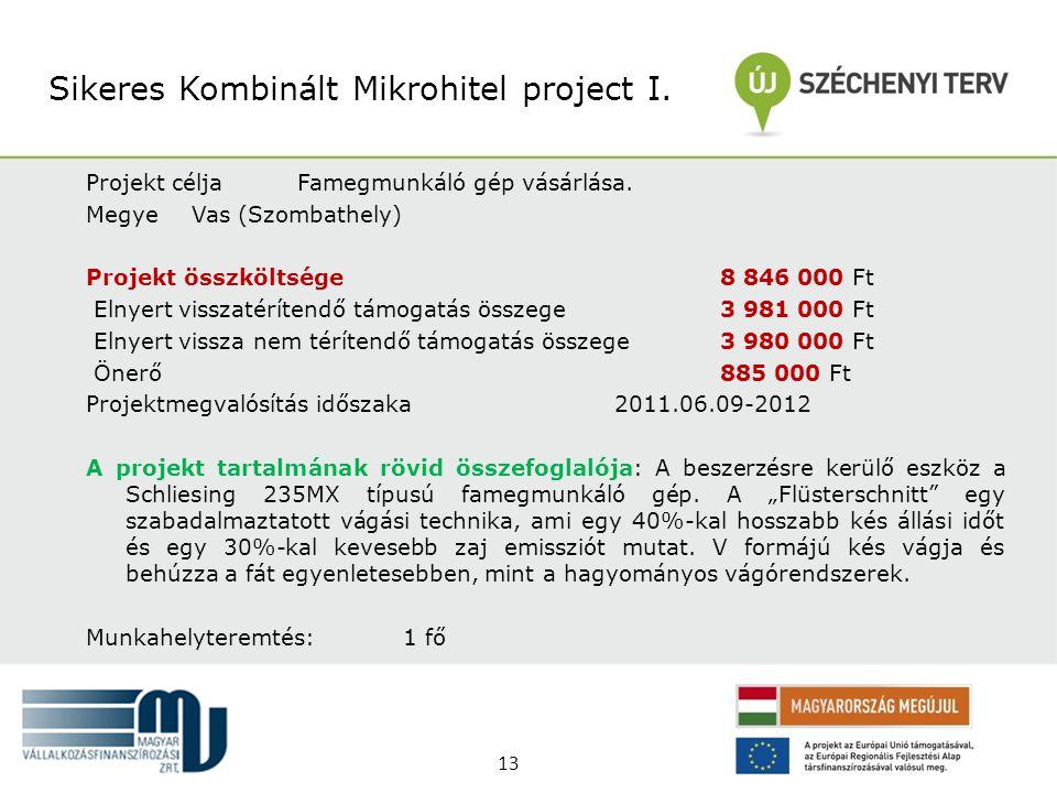 Sikeres Kombinált Mikrohitel project I.