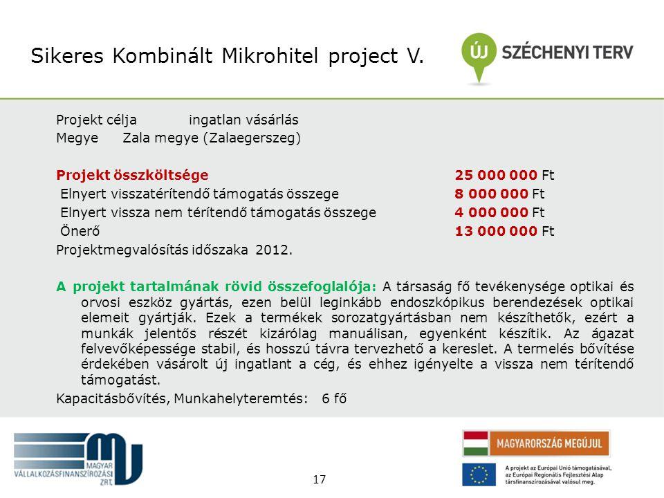 Sikeres Kombinált Mikrohitel project V.