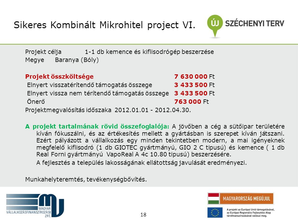 Sikeres Kombinált Mikrohitel project VI.