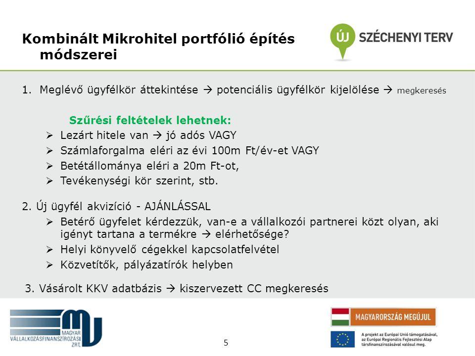 Kombinált Mikrohitel portfólió építés módszerei