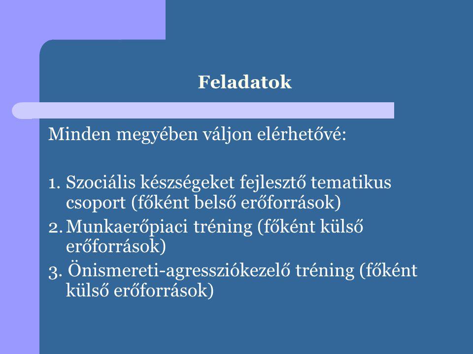 Feladatok Minden megyében váljon elérhetővé: 1. Szociális készségeket fejlesztő tematikus csoport (főként belső erőforrások)