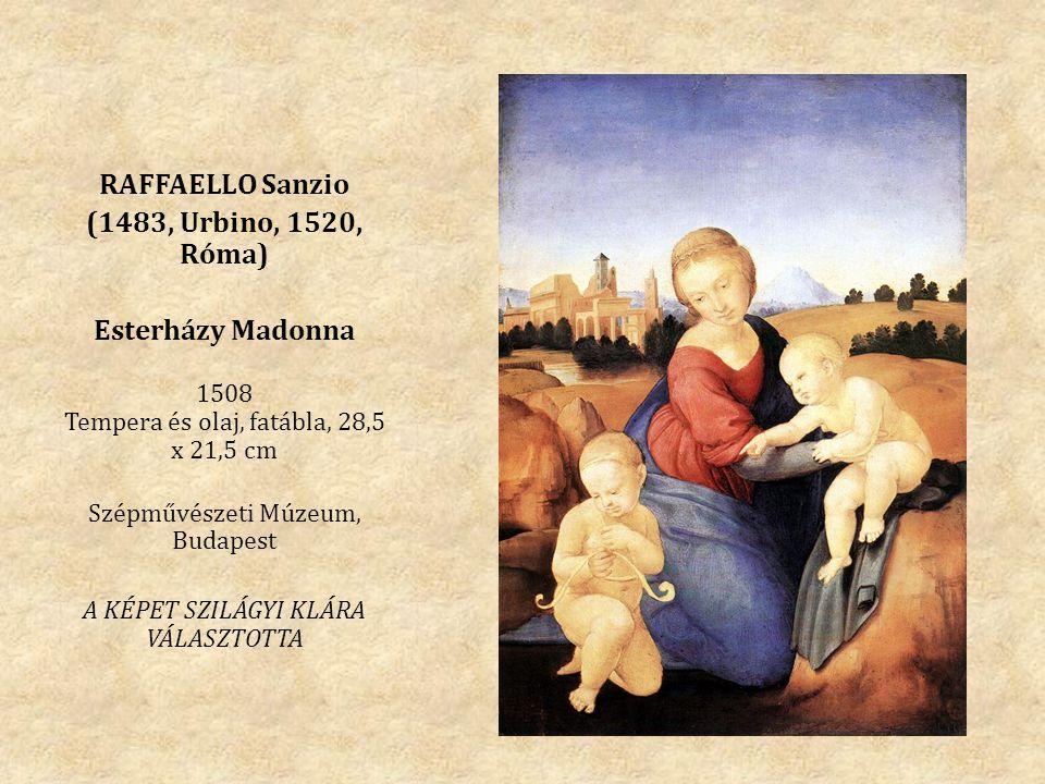 RAFFAELLO Sanzio (1483, Urbino, 1520, Róma) Esterházy Madonna