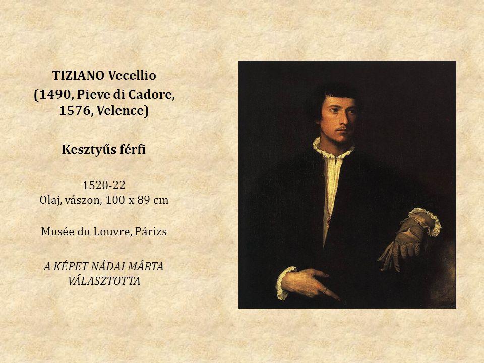 (1490, Pieve di Cadore, 1576, Velence)