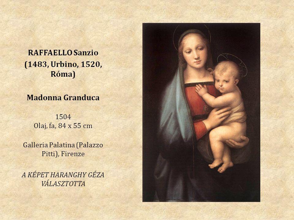 RAFFAELLO Sanzio (1483, Urbino, 1520, Róma) Madonna Granduca