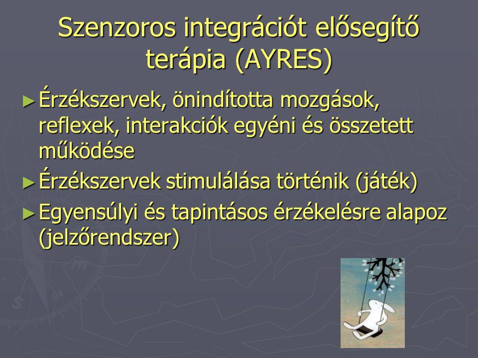 Szenzoros integrációt elősegítő terápia (AYRES)