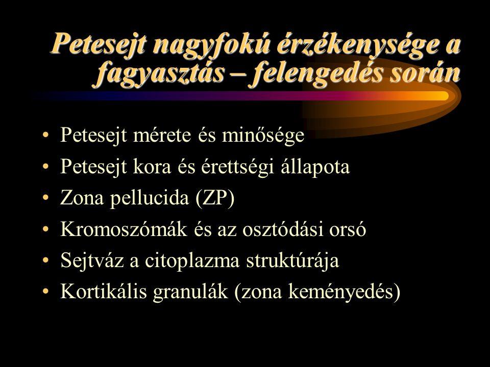 Petesejt nagyfokú érzékenysége a fagyasztás – felengedés során