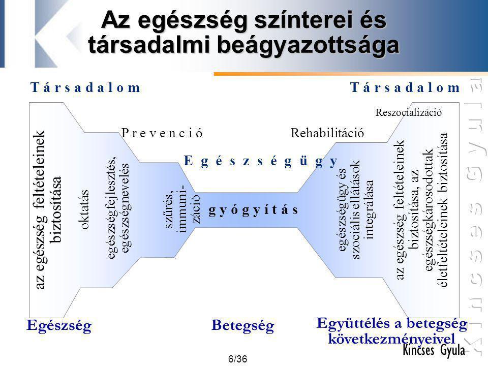 Az egészség színterei és társadalmi beágyazottsága