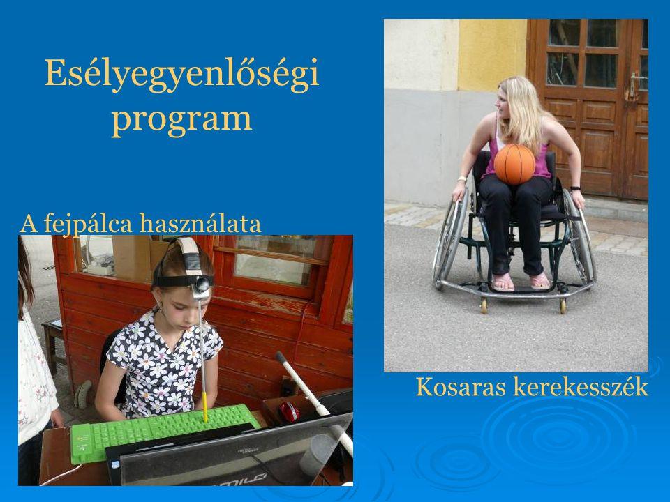 Esélyegyenlőségi program