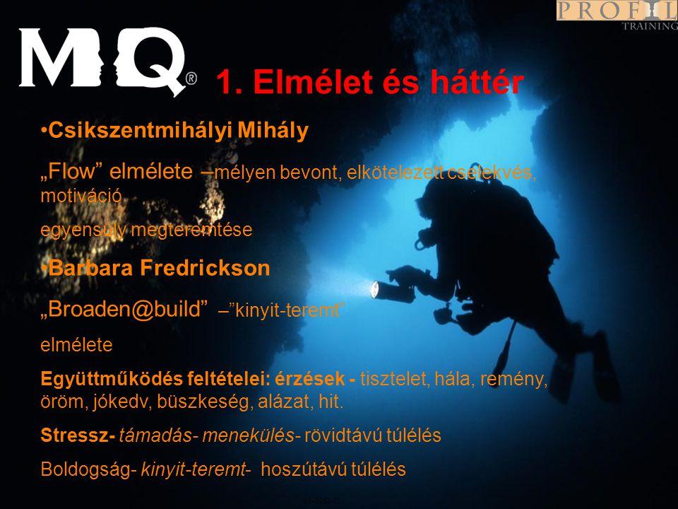 1. Elmélet és háttér Program Csikszentmihályi Mihály