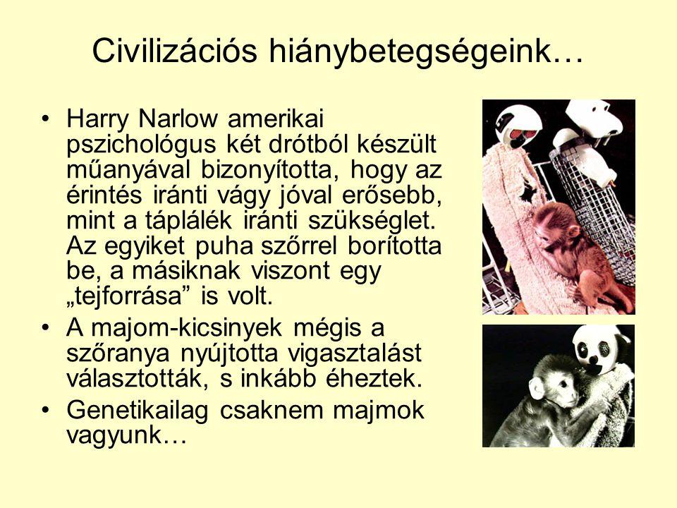 Civilizációs hiánybetegségeink…