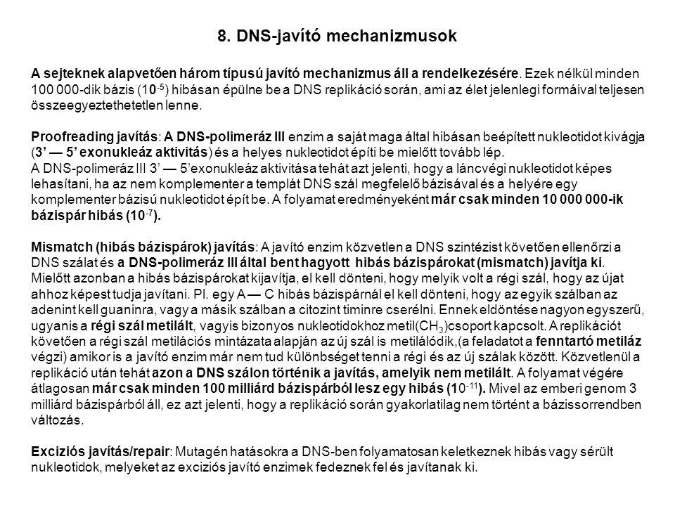 8. DNS-javító mechanizmusok