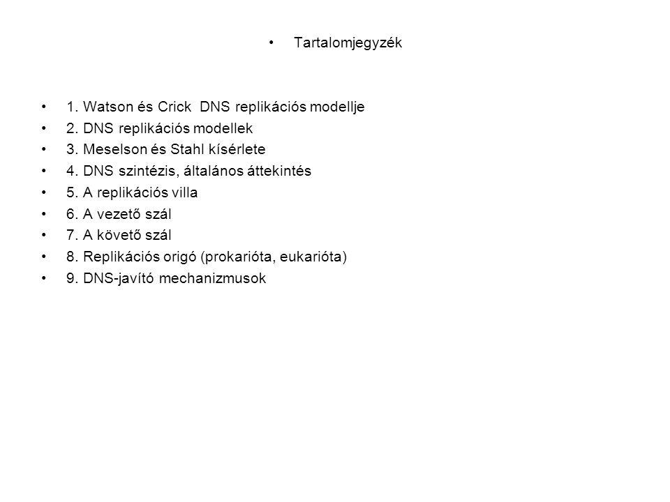 Tartalomjegyzék 1. Watson és Crick DNS replikációs modellje. 2. DNS replikációs modellek. 3. Meselson és Stahl kísérlete.