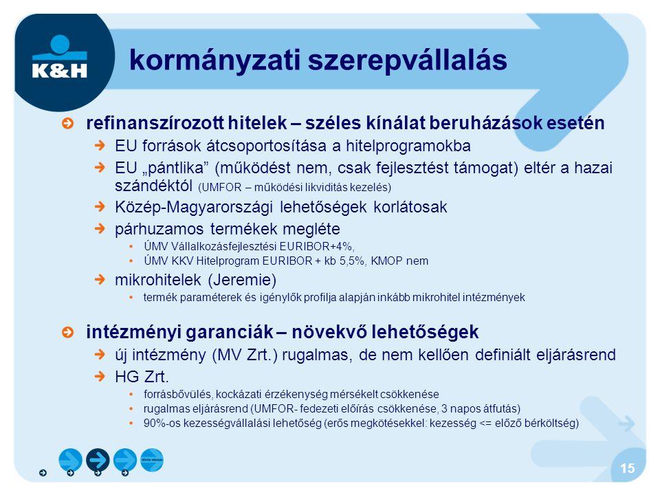 kormányzati szerepvállalás