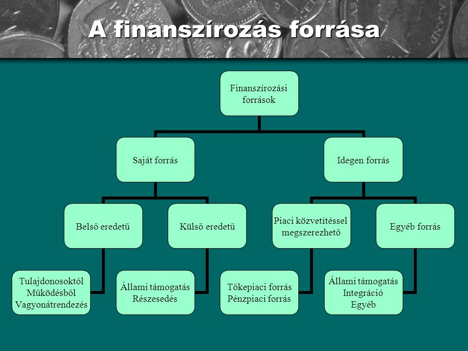 A finanszírozás forrása