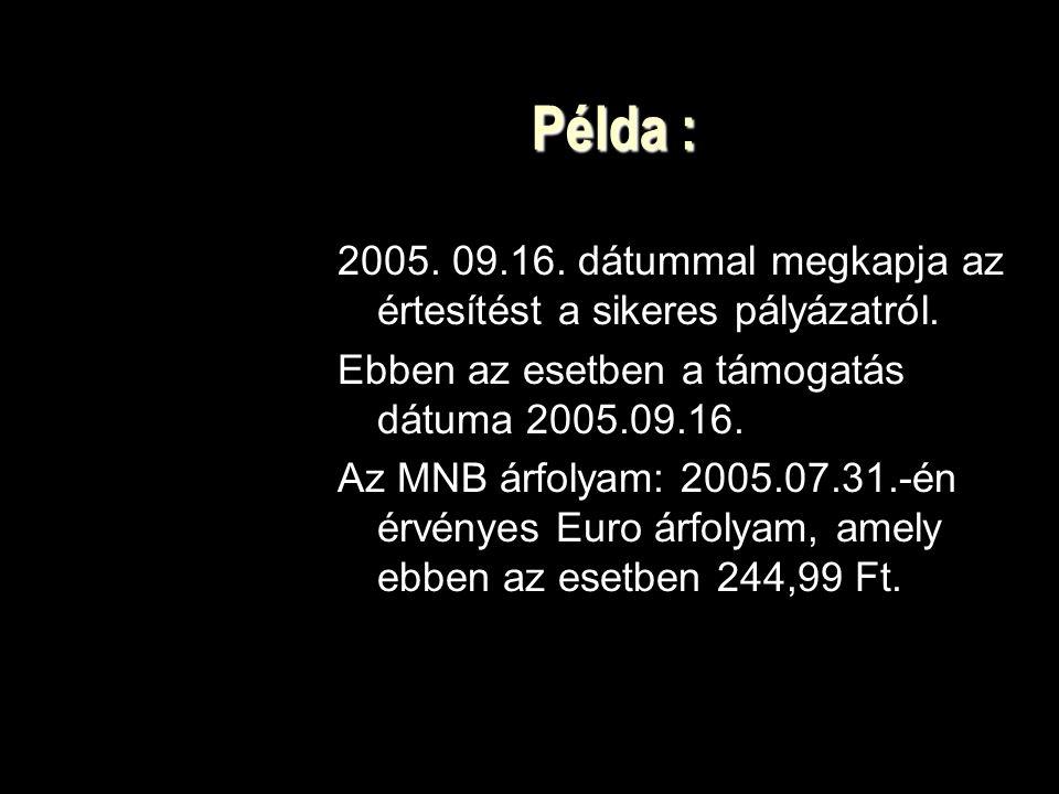 Példa : 2005. 09.16. dátummal megkapja az értesítést a sikeres pályázatról. Ebben az esetben a támogatás dátuma 2005.09.16.