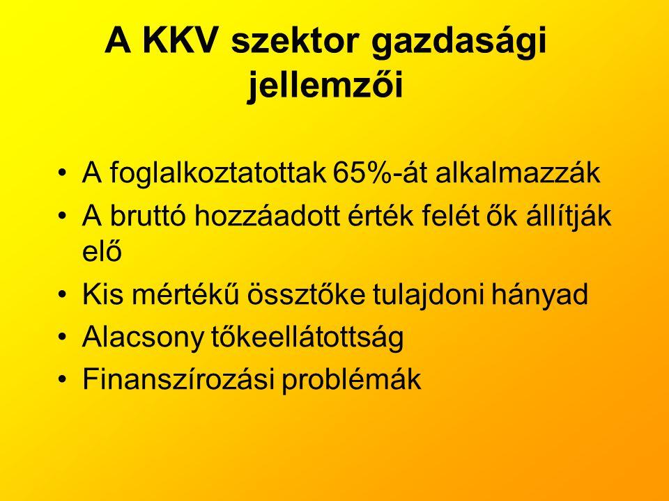 A KKV szektor gazdasági jellemzői
