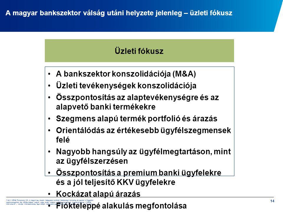 A magyar bankszektor válság utáni helyzete jelenleg – üzleti fókusz