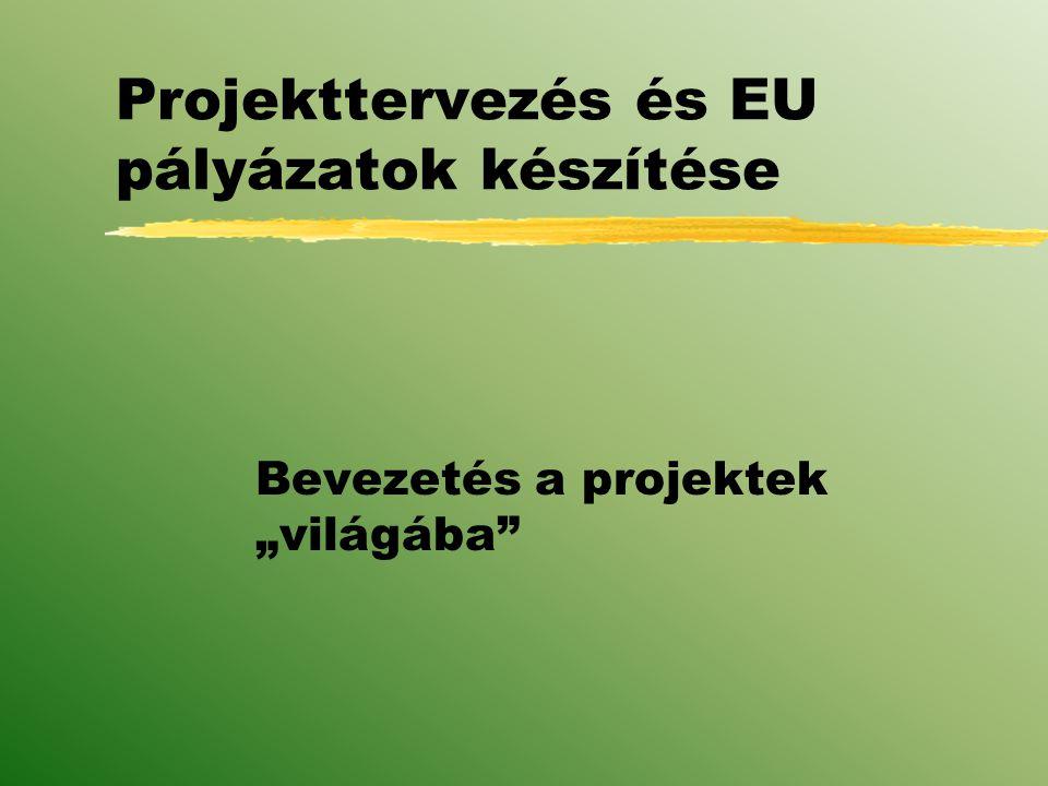 Projekttervezés és EU pályázatok készítése