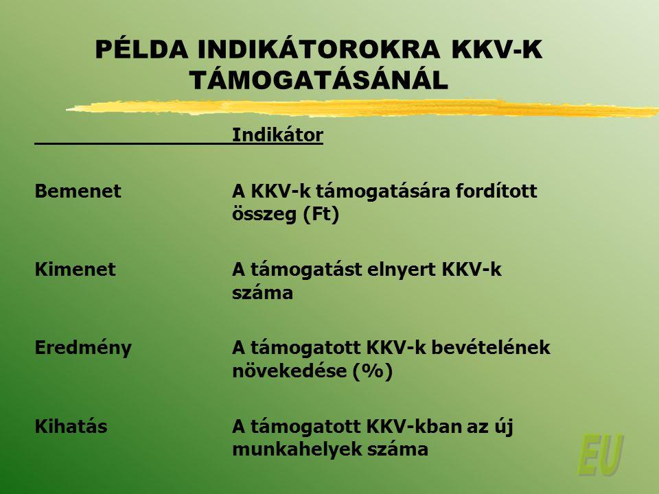 PÉLDA INDIKÁTOROKRA KKV-K TÁMOGATÁSÁNÁL
