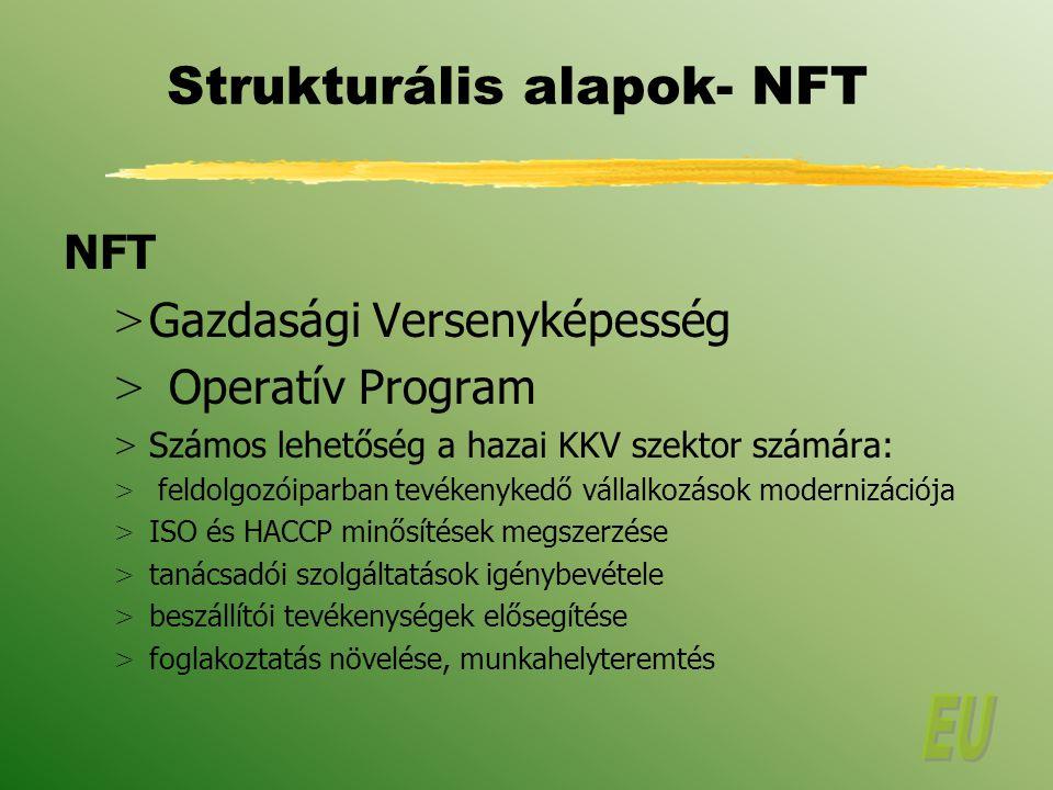 Strukturális alapok- NFT