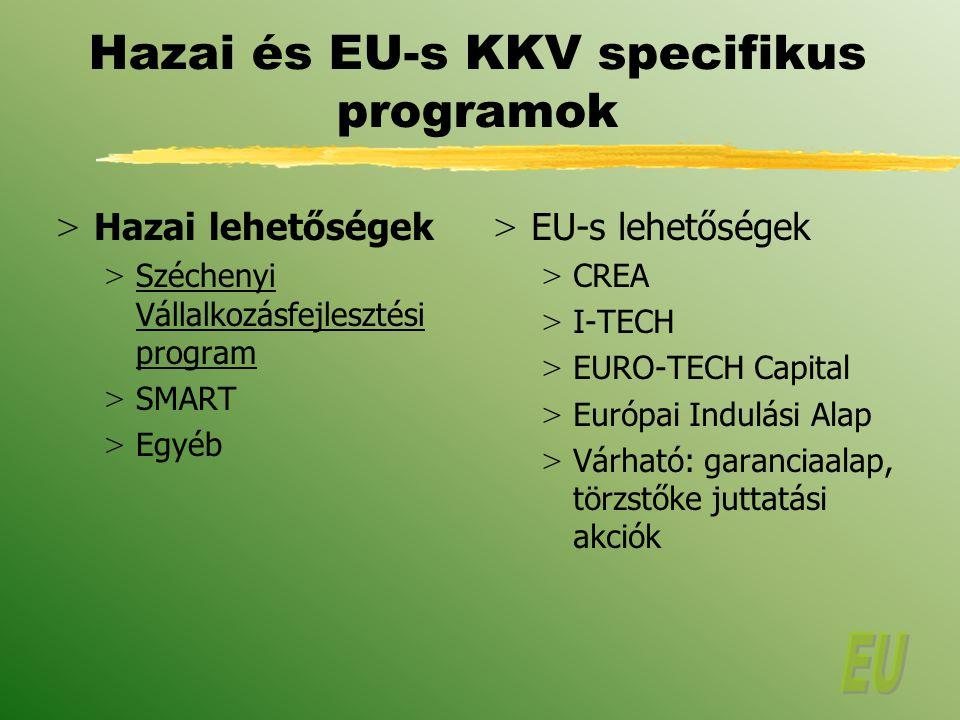 Hazai és EU-s KKV specifikus programok