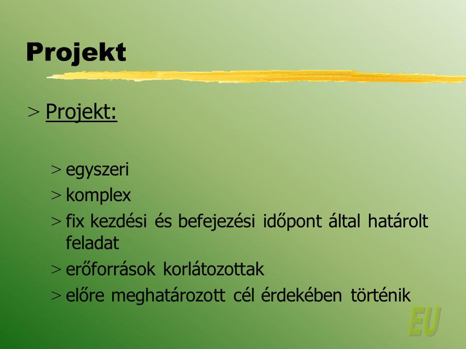 Projekt Projekt: egyszeri komplex