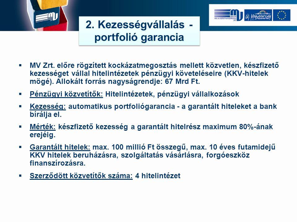 2. Kezességvállalás - portfolió garancia