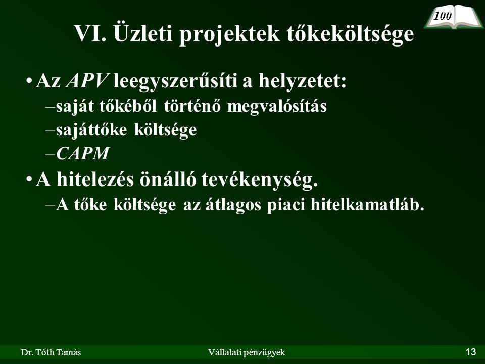VI. Üzleti projektek tőkeköltsége