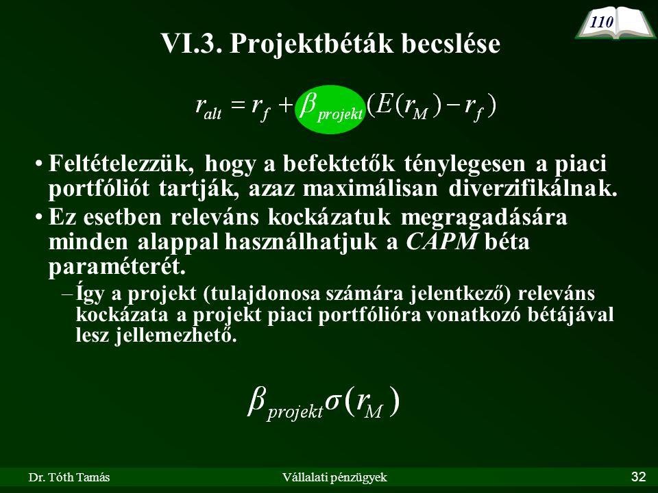 VI.3. Projektbéták becslése