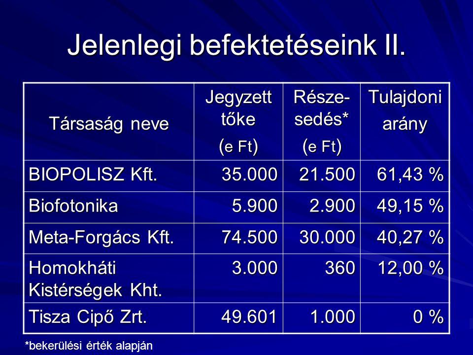 Jelenlegi befektetéseink II.