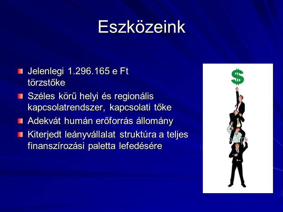 Eszközeink Jelenlegi 1.296.165 e Ft törzstőke