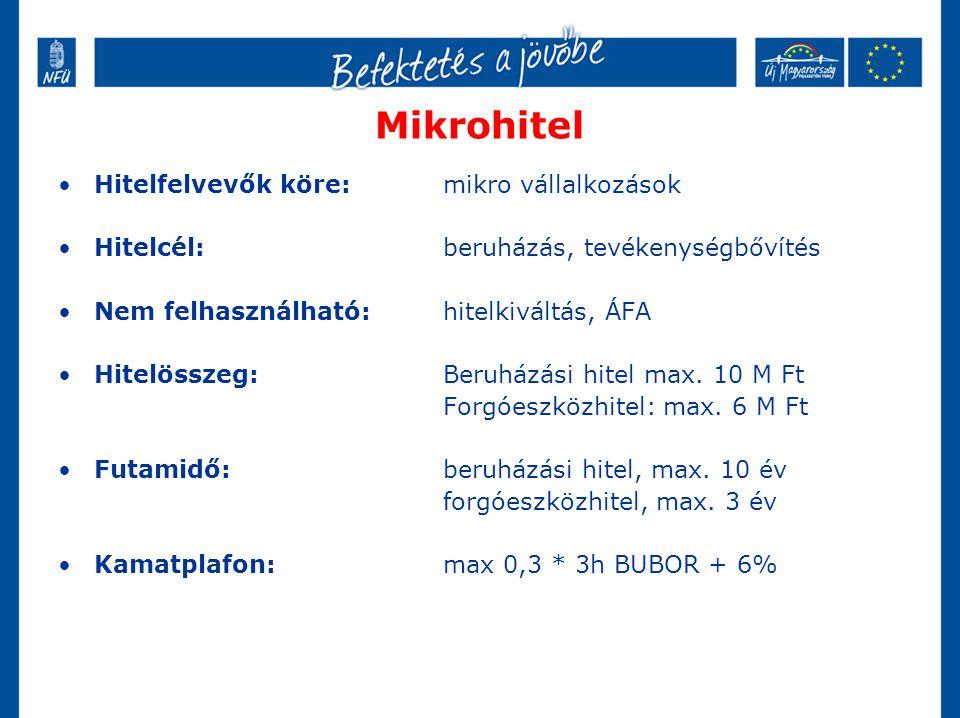 Mikrohitel Hitelfelvevők köre: mikro vállalkozások