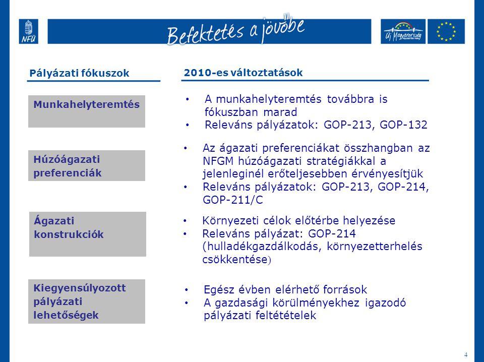 A 2010-es pályázati fókuszok
