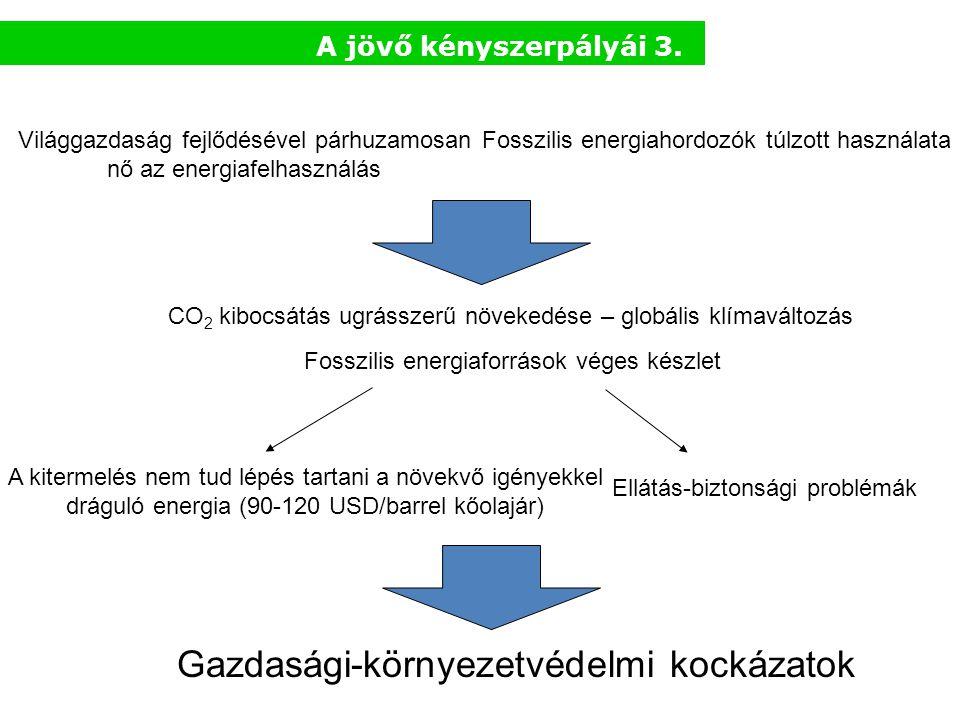 Gazdasági-környezetvédelmi kockázatok