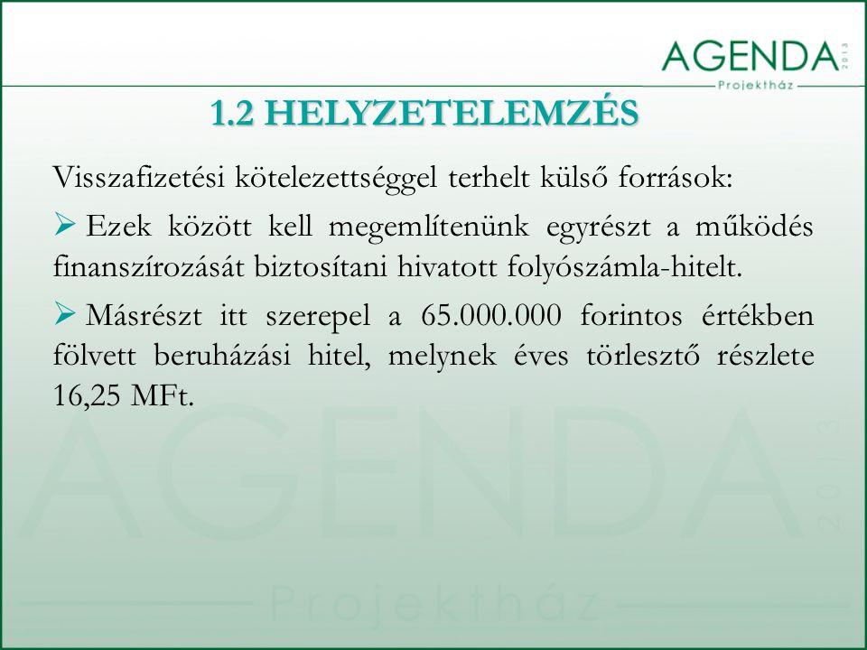1.2 HELYZETELEMZÉS Visszafizetési kötelezettséggel terhelt külső források: