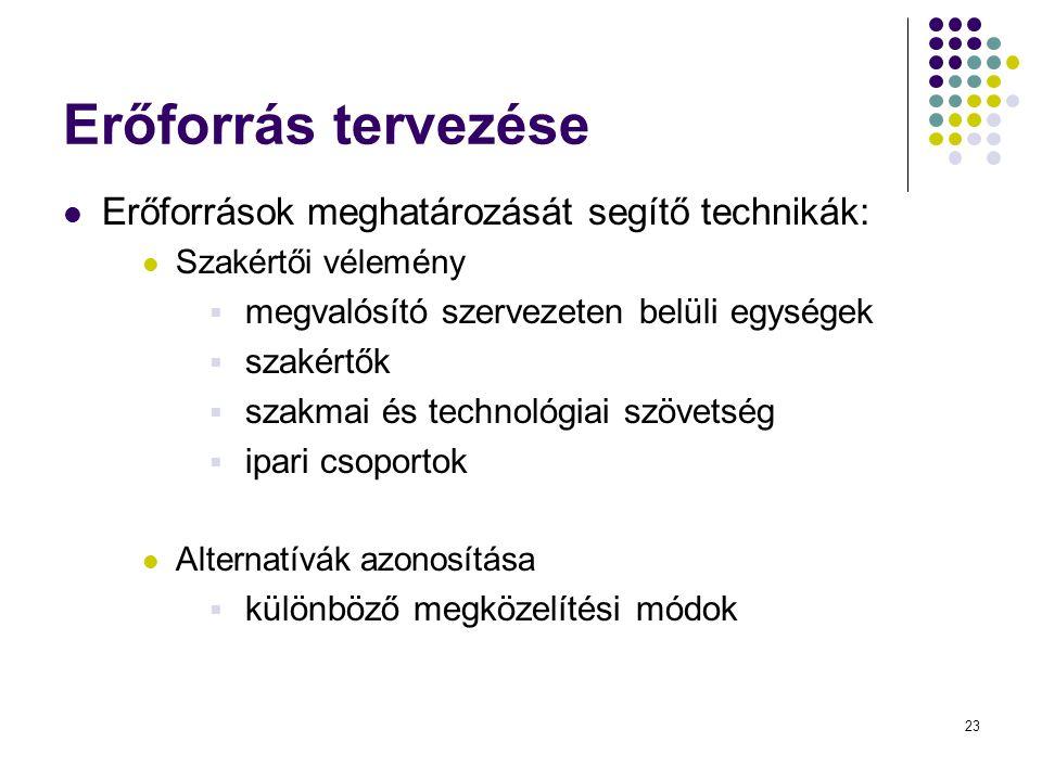 Erőforrás tervezése Erőforrások meghatározását segítő technikák: