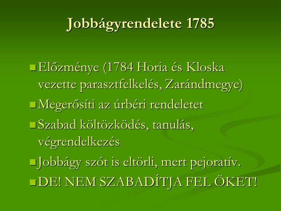 Jobbágyrendelete 1785 Előzménye (1784 Horia és Kloska vezette parasztfelkelés, Zarándmegye) Megerősíti az úrbéri rendeletet.