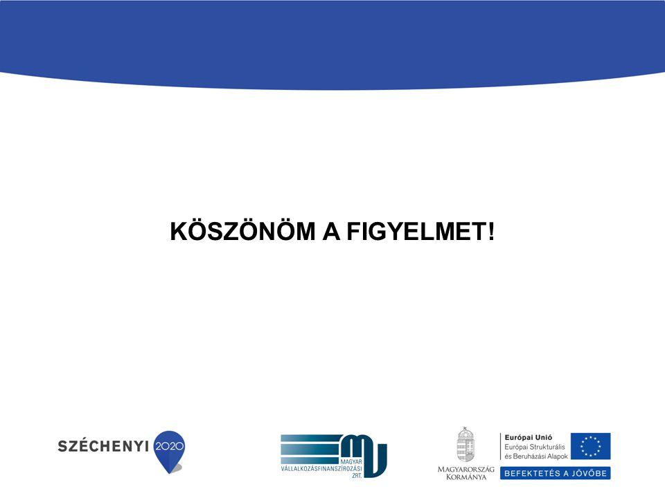 GB prezentáció 2017.04.04. KÖSZÖNÖM A FIGYELMET!