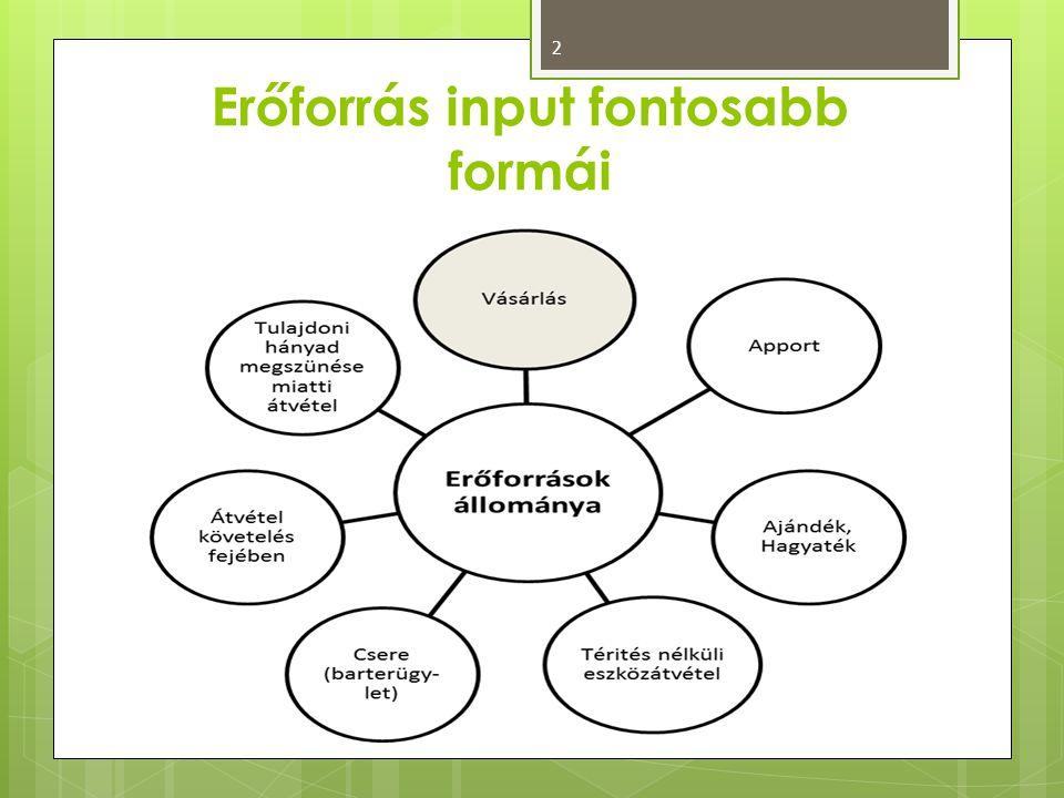 Erőforrás input fontosabb formái
