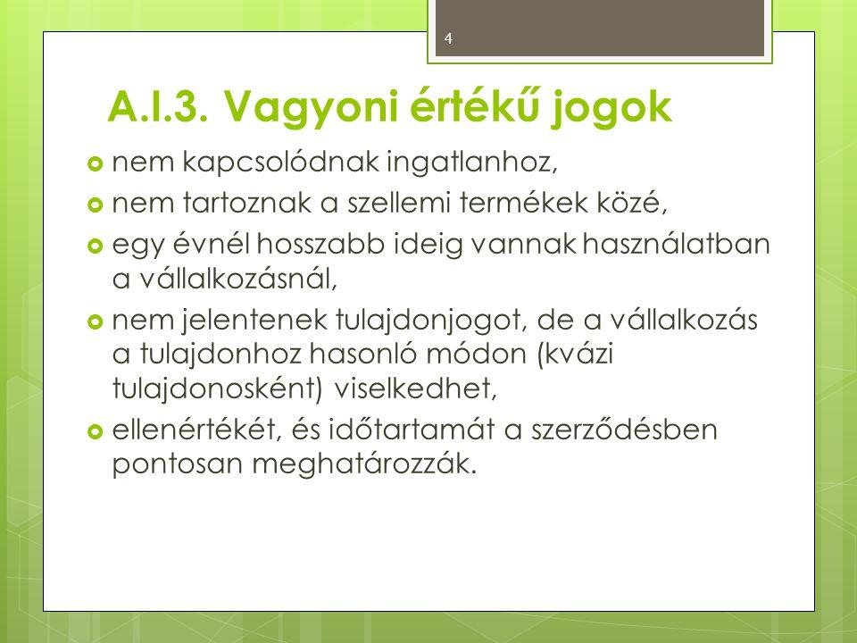 A.I.3. Vagyoni értékű jogok