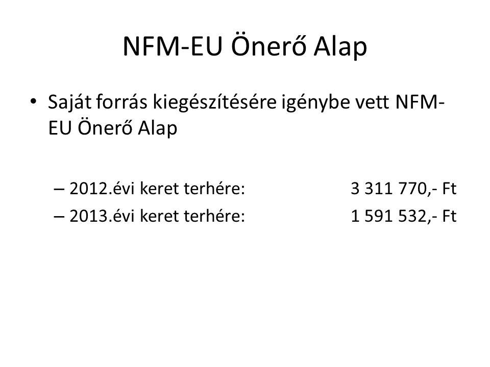 NFM-EU Önerő Alap Saját forrás kiegészítésére igénybe vett NFM-EU Önerő Alap. 2012.évi keret terhére: 3 311 770,- Ft.