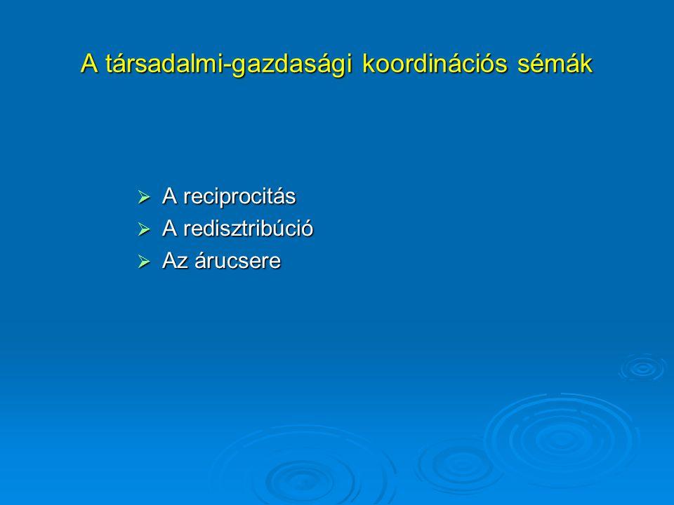 A társadalmi-gazdasági koordinációs sémák