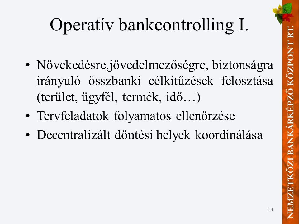 Operatív bankcontrolling I.