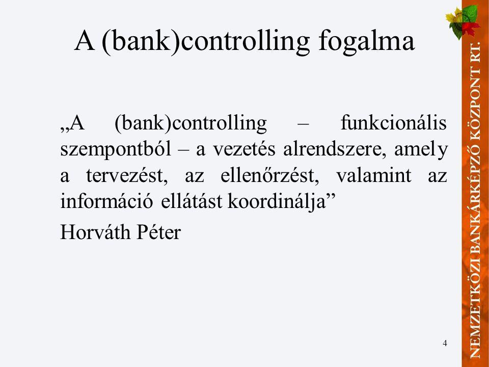 A (bank)controlling fogalma