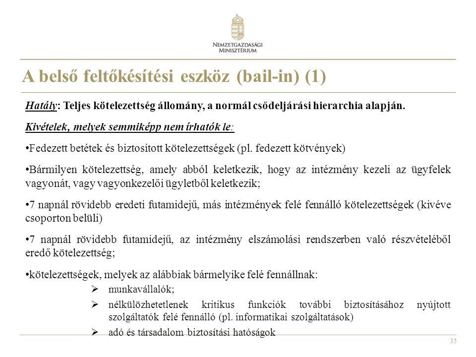 A belső feltőkésítési eszköz (bail-in) (1)