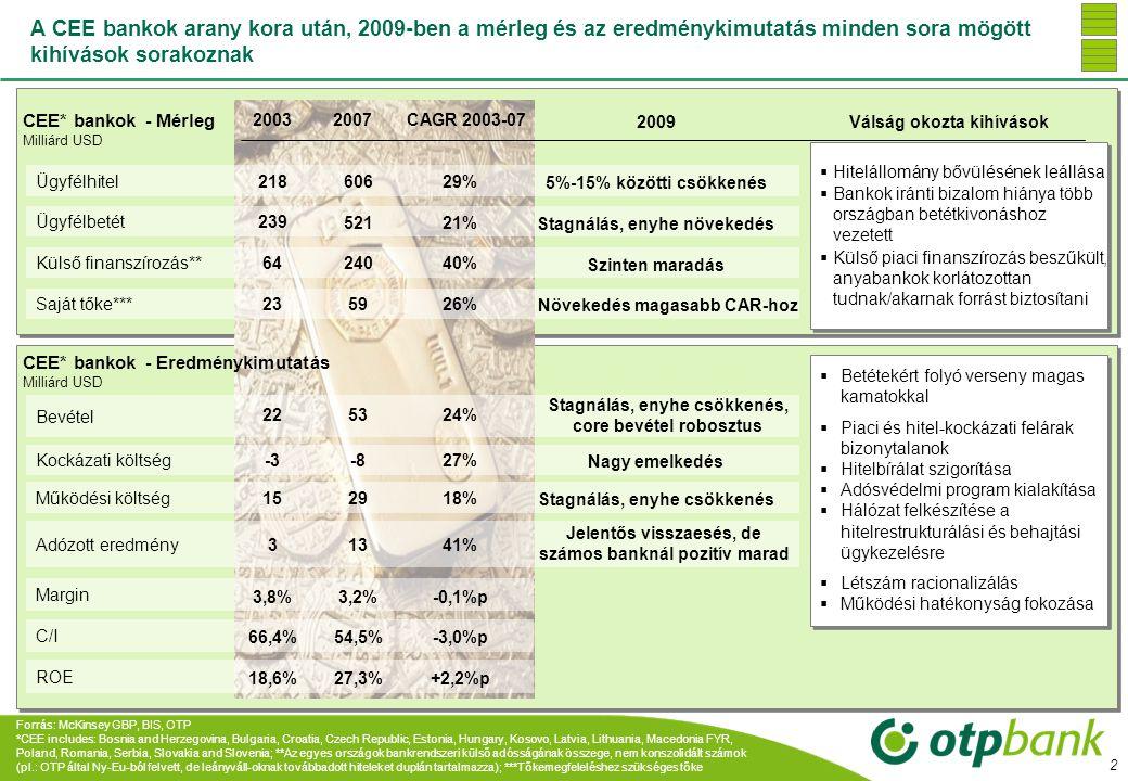A CEE bankok arany kora után, 2009-ben a mérleg és az eredménykimutatás minden sora mögött kihívások sorakoznak